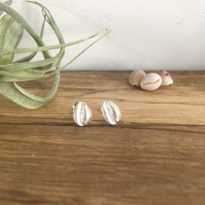 Silver Cowrie Studs